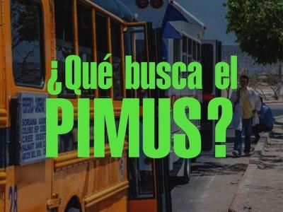 ¿Qué busca el Pimus?