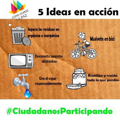 5 Ideas en acción