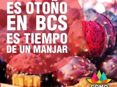 Hoy entra el otoño a Baja California Sur.
