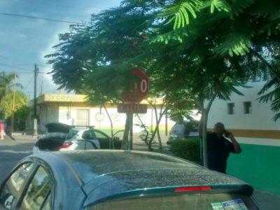 D.G.S.P.P.P.T.M continúa con el retiro de  arbustos en Señalamientos Viales de La Paz